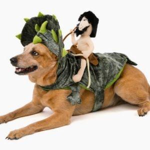 Pet Halloween costume caveman riding dinosaur